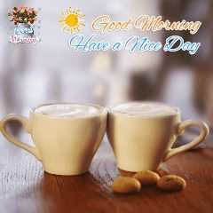 🌅 સુપ્રભાત 🙏 - Montage Goods Mening O Good Morning Have a Nice Day - ShareChat