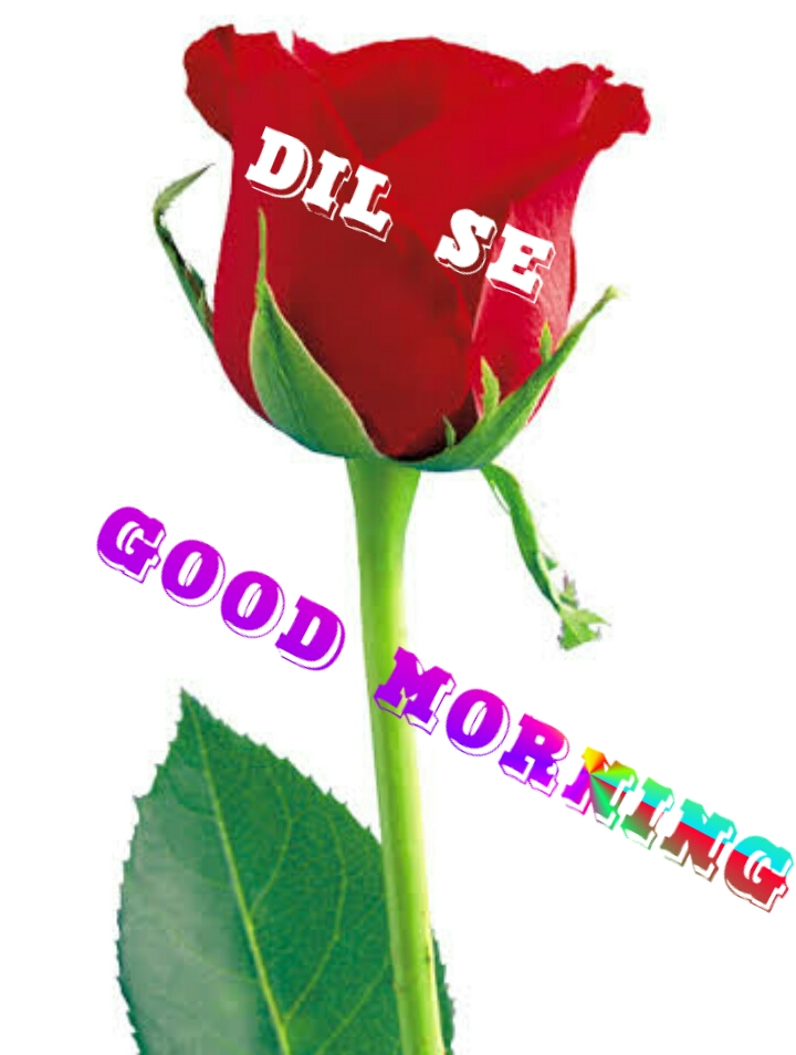 Good Morning Images Dil Se Thakkar Sharechat Funny Romantic