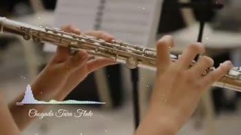 💗प्रेम / मैत्री स्टेट्स - Chogada Tara Flute Savoll SUBSCRIBED A Chegada Tara Flute - ShareChat