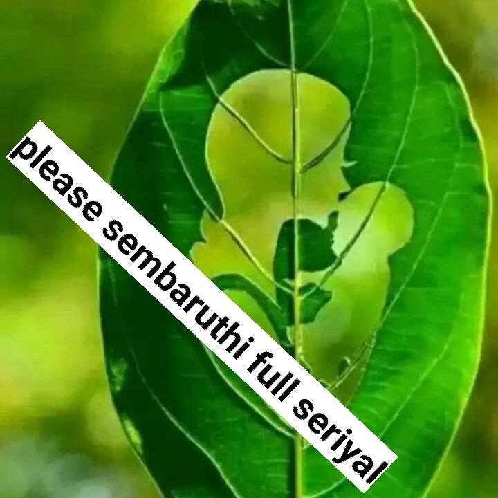 today episoad sembaruthi - please sembaruthi full seriyal - ShareChat