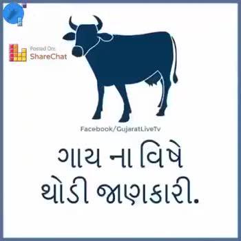 royal bharvad👑 - Posted on FEH . ShareChat Facebook / GujaratLiveTV I c ગાય માતા ની પીઠ ઊપર એક કુંધ આવેલી હોય છે એ કુંબ્ધ ઊપર સુર્યકેતુ નામ ની નાળી હોય છે . રોજ સવારે અડઘો કલાક ગાય માતા ની કુંબ્ધ ઊપર હાથ ફેરવવાથી રોગોનો નાશ થાય છે . ShareChat Facebook / GujaratLiveTV | તમને આ પોસ્ટ સારી લાગી હોય તો તમારા મિત્રો સુધી પહોચાડો . - ShareChat