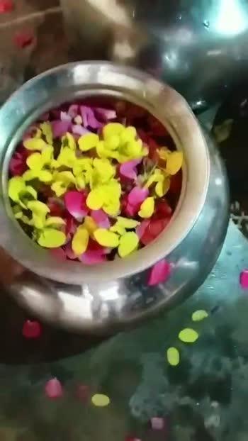 పెళ్లి సంబరాలు - ShareChat