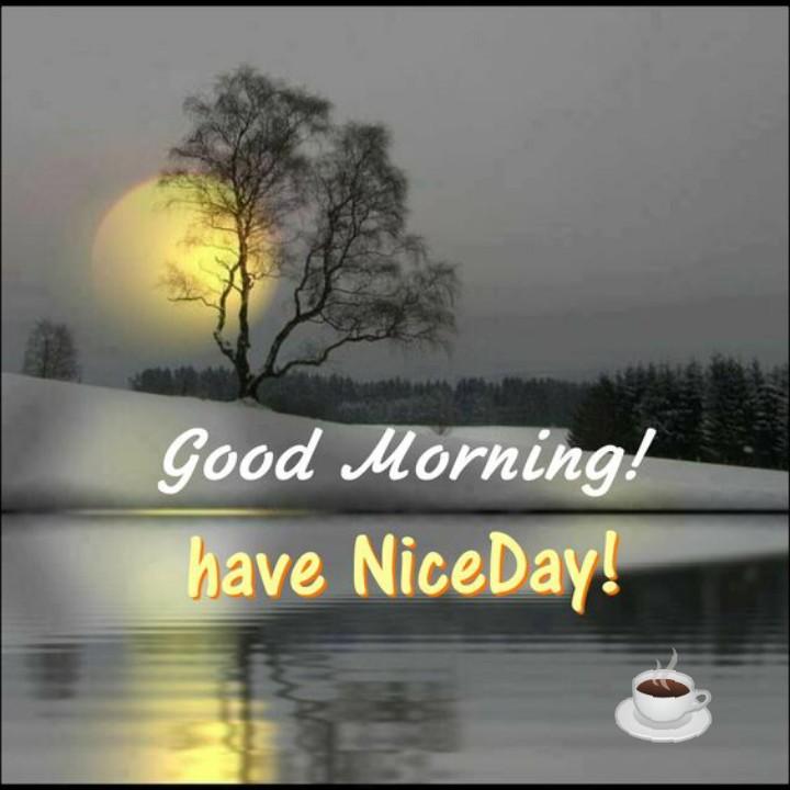 🌹☕good morning☕🌹 - Good Morning ! have NiceDay ! - ShareChat