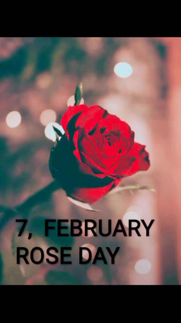 💑 14 Feb - Valentine's Day - Diana 10 , FEBRUARY TEDDY DAY : S s os @ uttamkumarktr FEBRUARY Happy Valentine ' s Day @ uttamkumarktr - ShareChat