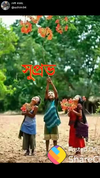 subha sokal - পােস্ট করেছে । @ ashim 94 প্রভাক্ত Posted On : Sharec - ShareChat