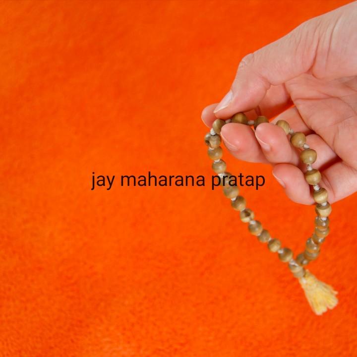 महाराणा प्रताप जयंती - jay maharana pratap - ShareChat