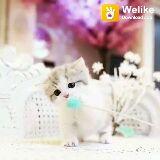 ಬೆಕ್ಕು - Welike Download app Welike Download app - ShareChat