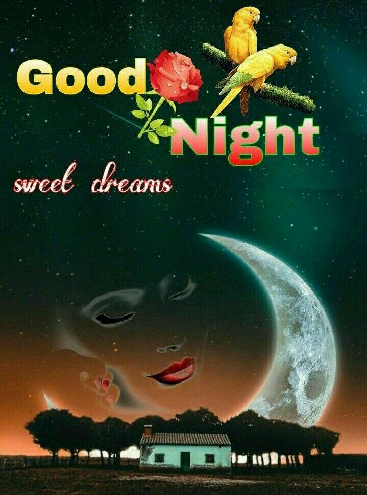best friends - Good ANight street dreams - ShareChat