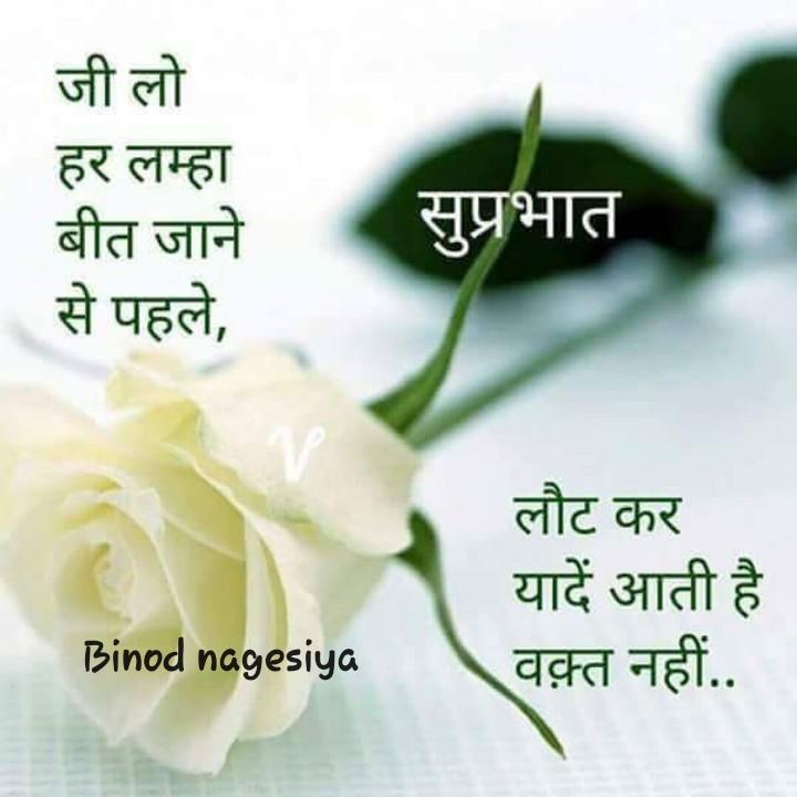 👲 स्वे बे - जी लो हर लम्हा बीत जाने से पहले , सुप्रभात लौट कर यादें आती है वक़्त नहीं . . Binod nagesiya - ShareChat