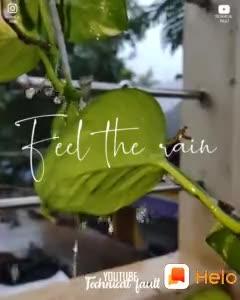 feel the music - ShareChat