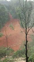 केरल में भारी बारिश और बाढ़ - ShareChat