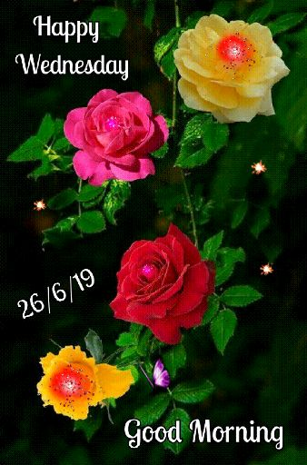 ✨बुधवार - Happy Wednesday 26 / 6 / 19 Good Morning - ShareChat