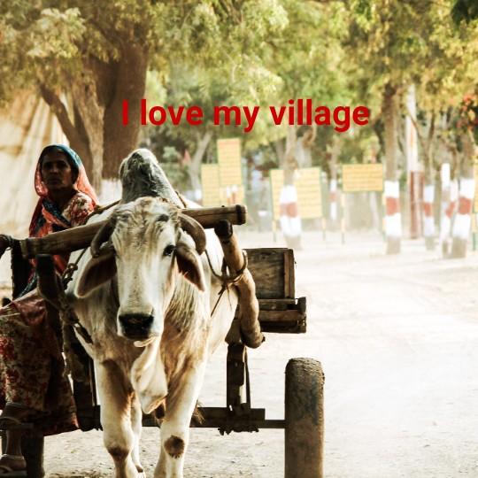 my village - love my village - ShareChat