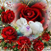 💘 પ્રેમ 💘 - 28 Special for You PicMix - ShareChat