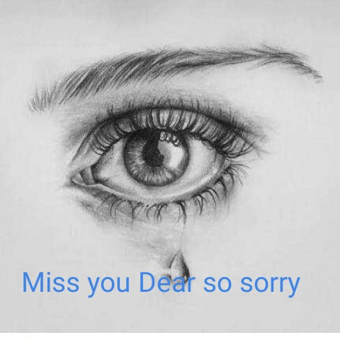 My Love👫🌹💑🌹 - Miss you Dedł so sorry - ShareChat