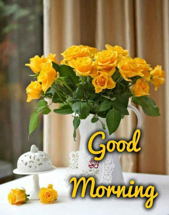 🌞সুপ্রভাত - Good OO de la Morning - ShareChat