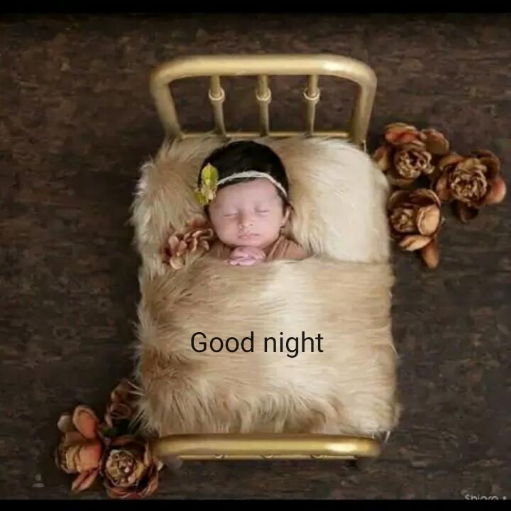 ସୋସିଆଲ ମିଡିଆ ଦିବସ - Good night - ShareChat