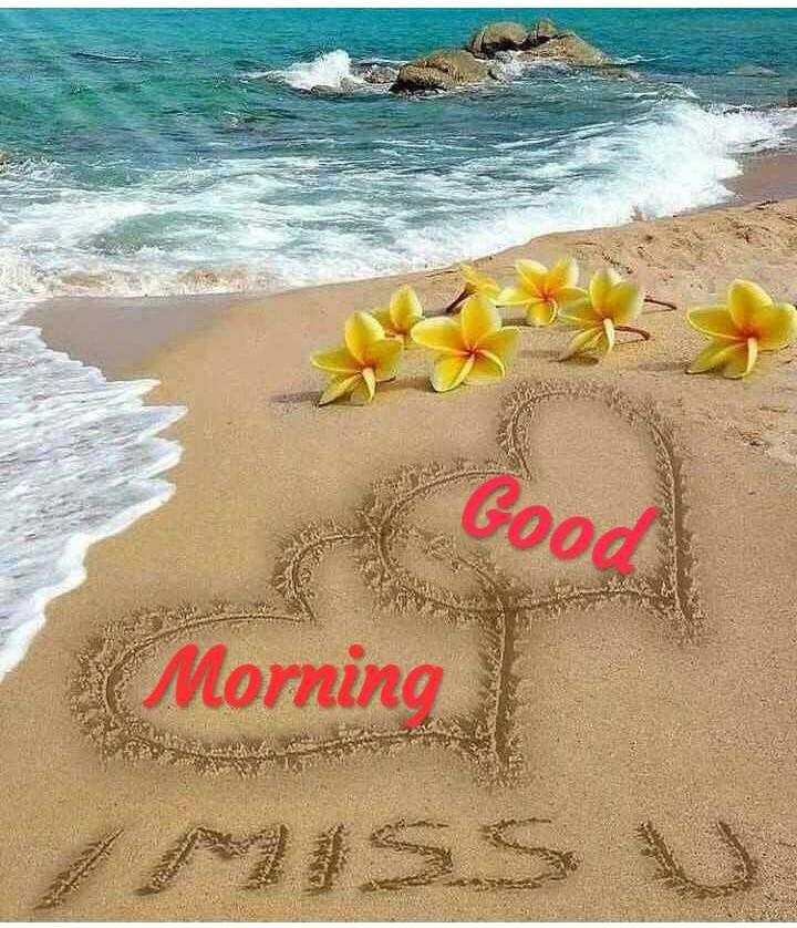 🌞সুপ্রভাত - Good ( Morning AMSSV - ShareChat