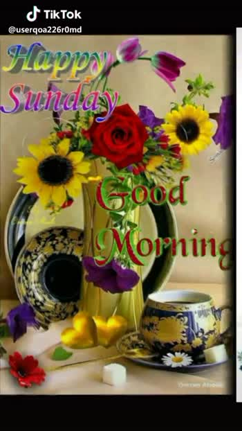 happy Sunday - 19 / 05 / 19 Happy Sunday Good Morning @ useroa226rOmd Good Morning @ useroa226rOmd - ShareChat