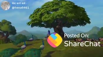 🦆 मोर दिवस - पोस्ट करने वाले : @ hena9461 Posted On : ShareChat ShareChat Hena khan hena9461 ShareChat ! Follow O - ShareChat