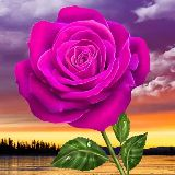 🌹🌲🌴Flowers🌹🏵️🌺 - Author on ShareChat: Funny, Romantic, Videos, Shayaris, Quotes