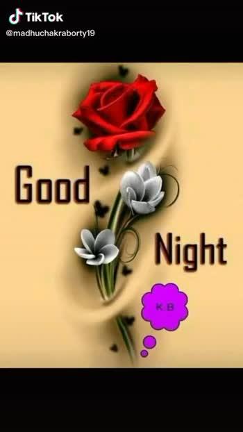 good night  (.......) - ShareChat