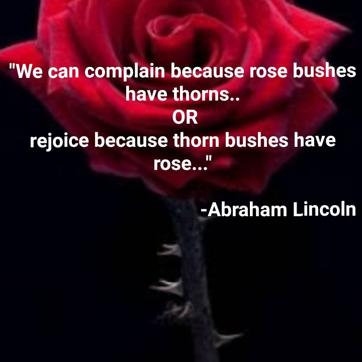 Motivation Status - We can complain because rose bushes have thorns . . OR rejoice because thorn bushes have rose . . . - Abraham Lincoln - ShareChat