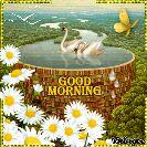 🌞 ഗുഡ് മോണിംഗ് - GOODIE MORNING , Blingee - ShareChat