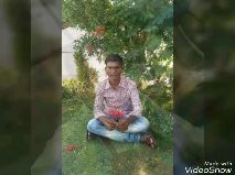 ହୋଲି ବିଡ଼ିଓ - Made with VideoShow Made with VideoShow - ShareChat