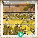 শুভ_দুপুর - Posted CO native Influence of wami Vivekananda on Subhash Chandra Bose - ShareChat