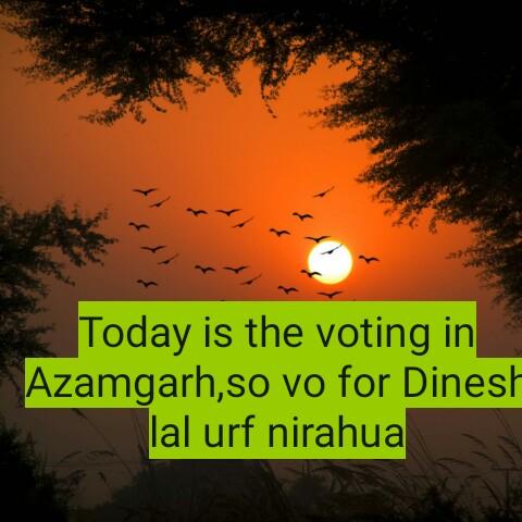 🗳 छठे चरण का मतदान - Today is the voting in Azamgarh , so vo for Dinesh lal urf nirahua - ShareChat