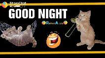 📱 ਵਟਸਐਪ ਸਟੇਟਸ - ShareChat @ _ italy GOOD NIGHT RamanArora - ShareChat