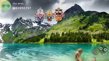 🎶 જગન્નાથજી ના ગીતો - પોસ્ટ કરનાર ; @ 61950291 ShareChat jay 61950297 હું શેરચેટ ને પ્રેમ કરું છુ . Follow OO - ShareChat