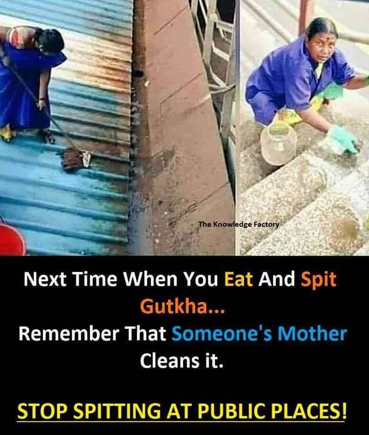 📰 7 ઓગસ્ટનાં સમાચાર - The Knowledge Factory Next Time When You Eat And Spit Gutkha . . . Remember that someone ' s Mother Cleans it . STOP SPITTING AT PUBLIC PLACES ! - ShareChat