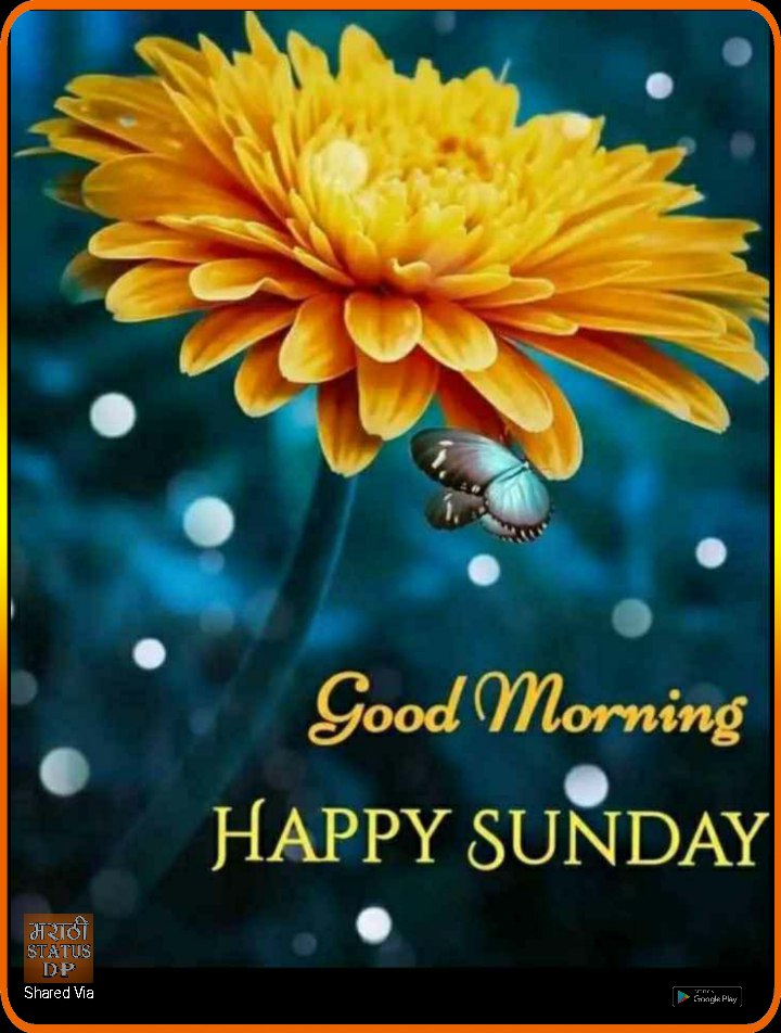 ☀️गुड मॉर्निंग☀️ - Good Morning HAPPY SUNDAY मराठी STATUS DP Shared Via Sigle Play - ShareChat
