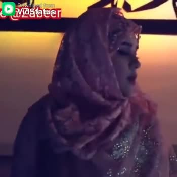 ishq subhan allah - Download from vidStatuer Download from Vidstatuer - ShareChat