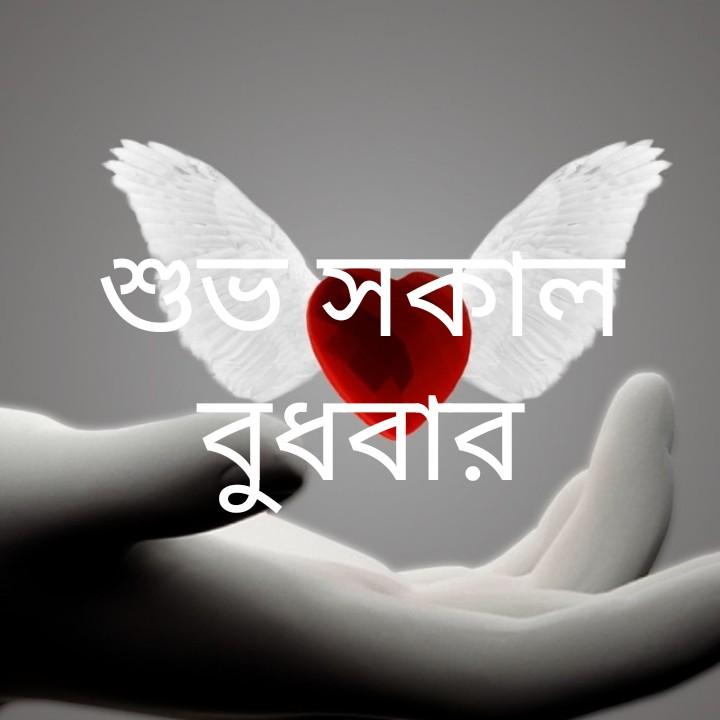 শুভ কামনা - শুভ সকাল বুধবার - ShareChat