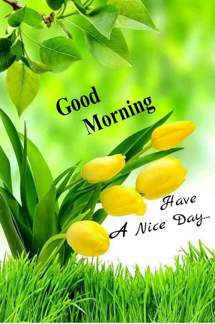 🌞காலை வணக்கம் - Good Morning Have A Nice Day . . . - ShareChat
