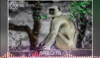 ಜೈ ಭಜರಂಗಿ - SK EDITS SK EDITS 111 . . SK EDITS SK EDITS . . . . . m - ShareChat