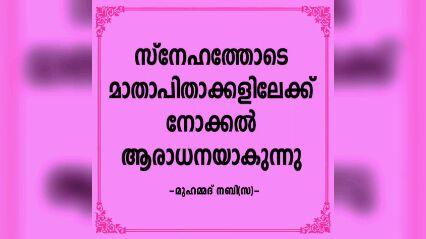 rabi ul awwal - കടിയുറുമ്പെങ്കിലും കൂട്ടിൽ തീവെച്ച് നശിപ്പിക്കരുത് - മുഹമ്മദ് നബി ( സ ) KOLLAM - ഏവർക്കും   T നബിദിന - ShareChat