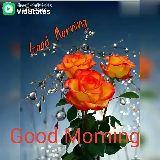 🌅ಶುಭೋದಯ - Download : ViaStatus Good morning ood Morning Download : ViaStatus Good . . Morning . . Good Morning Sa . - ShareChat