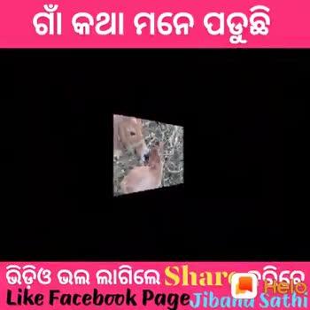 👭ମୋ ଅଞ୍ଚଳରେ ରଜ ମଉଜ - । ଗାଁ କଥା ମନେ ପଡୁଛି ଭିଡ଼ିଓ ଭଲ ଲାଗିଲେ Shaଠରିରେ Like Facebook Page Jibana Sathi । ଗାଁ କଥା ମନେ ପଡୁଛି ଭିଡ଼ିଓ ଭଲ ଲାଗିଲେ Shaଠରିରେ Like Facebook Page Jibana Sathi - ShareChat