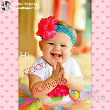 👬 பிரெண்ட்ஷிப் ஸ்டேட்டஸ் - போஸ்ட் செய்தவர் : | @ kawth and 4 Good Morning Have a Nice Day Based on ShareChat ShareChat ANUSHAMANISHA007 @ gmail . kavithaikari ANGEL ANUSHA Follow - ShareChat