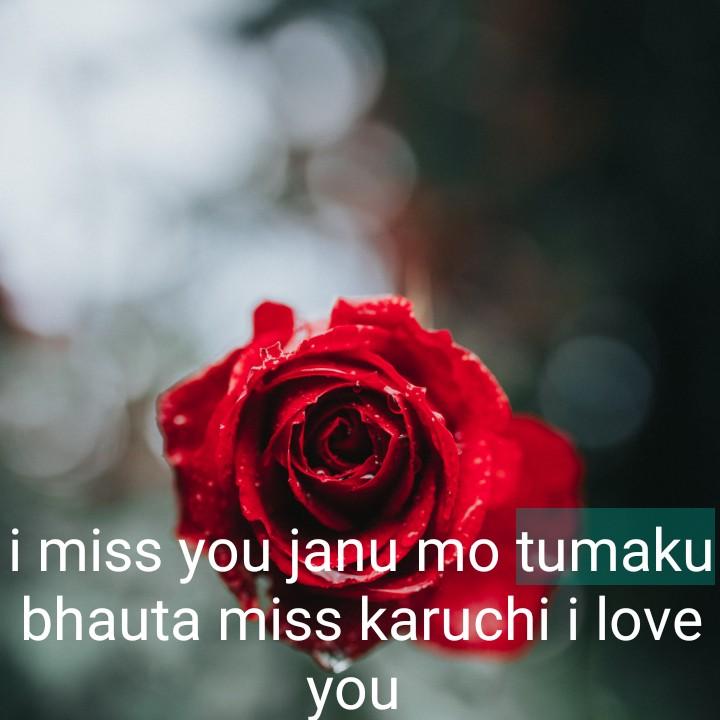 😍ପ୍ରେମ ପତ୍ର😍 - i miss you janu mo tumaku bhauta miss karuchi i love you - ShareChat