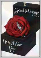 😊💐good morning 😊💝 - ShareChat