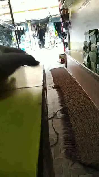 🛒दुकान का वीडियो - ShareChat