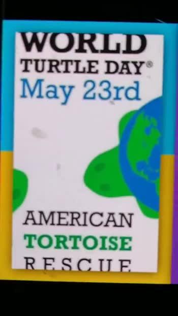 🐢உலக ஆமை தினம் - WORLD TURTLE DAY May 23rd AMERICAN TORTOISE RESCUE WORLD TURTLE DAY May 23rd AMERICAN TORTOISE RESCUE - ShareChat