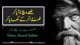 dil de jajbat - پیاروے ایسے پوٹ لا سارے پنڈتے سایہ کر حضرت با بلھے شاء Voice : Saeed Aslam Saeed Aslam Official SUBSCRIBED YouTube Channel Saeed Aslam Official - ShareChat