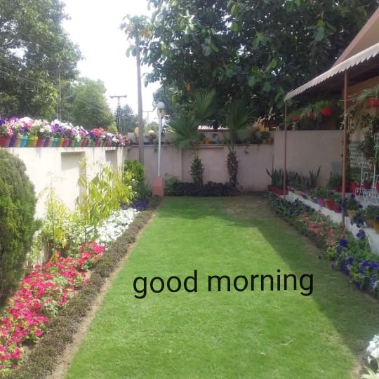 💐आंबेडकर जयंती 💐 - good morning - ShareChat
