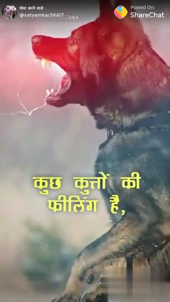 indian army 😘😘😘... - ShareChat